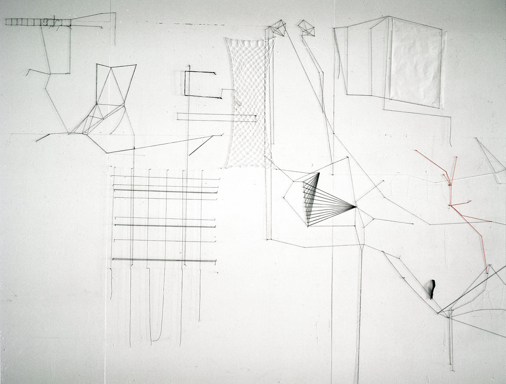 detail of six jours, wall drawing in thread, 3x5m, 2011